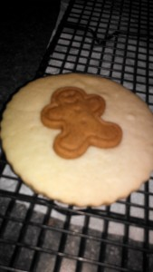 gingerbread cookie atop sugar 2